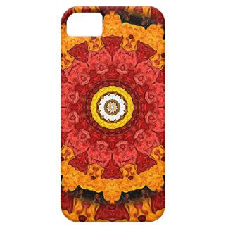 Decorative Slices of Orange iPhone 5 Covers