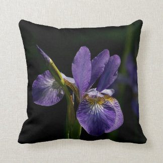 Decorative Throw Pillows. Cushions