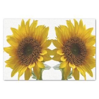 Decorative tissue paper sunflowers