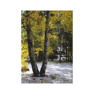 Decorator Autumn Colors Wrapped Canvas Canvas Prints