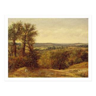 Dedham Vale, c.1802 (oil on canvas) Postcard