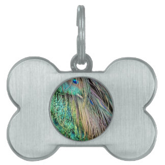 Deep Green And Tan Peacock Feathers Pet Name Tag