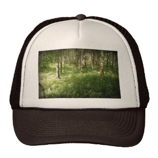 Deep in the Woods Hat