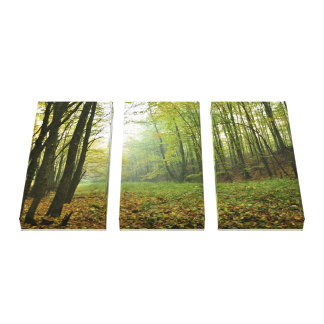 Deep In The Woods Wrapped Canvas Canvas Print