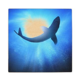 Deep Ocean Shark Silhouette Wood Coaster