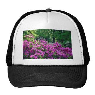 Deep Pink Azalea flowers Mesh Hats