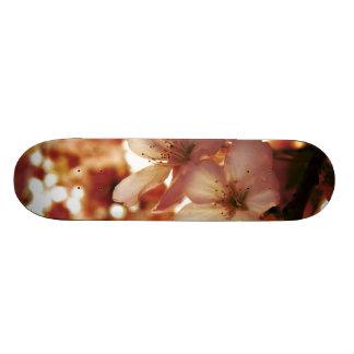 Deep Pink Skate Board Deck