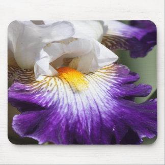 Deep Purple and White Iris Mousepad