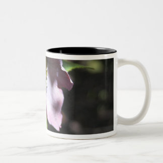 Deep Purple Black Hellebore  Flower Mug