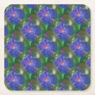 Deep Purple Morning Glory With Morning Dew Square Paper Coaster