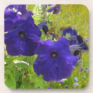 Deep Purple Petunia Designs Coasters