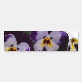 Deep Purple White Pansies Bumper Sticker