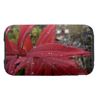 Deep Red Leaves; No Text Tough iPhone 3 Case