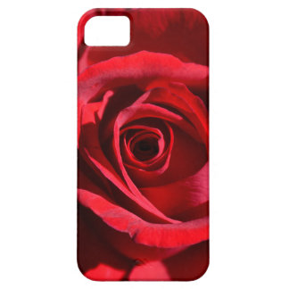 Deep Red Rose iPhone 5 Cover