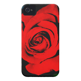 Deep Red Rose iPhone 4 Case