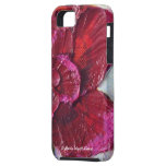 Deep Red Rose iPhone 5 Case