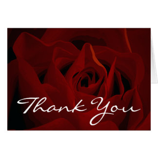Deep Red Rose Thank You Card