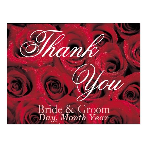Deep Red Roses Thank You Postcard (1)