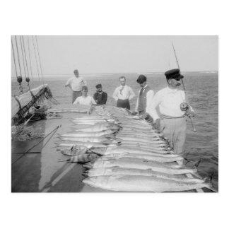Deep Sea Fishing, 1894 Postcard