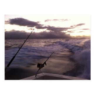 Deep Sea Fishing Post Cards