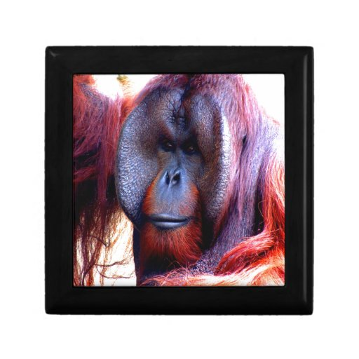 Deep thinker monkey keepsake box