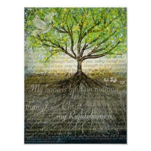 Deeper roots posters