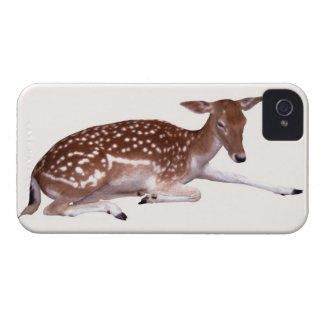 deer 2 iPhone 4 cases