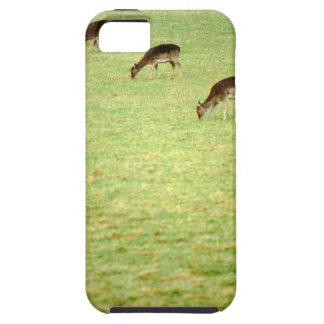 deer 2 iPhone 5 case