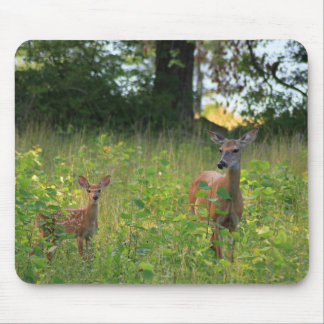 Deer and Fawn Mouse Pad