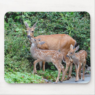 Deer and Fawns Mousepad