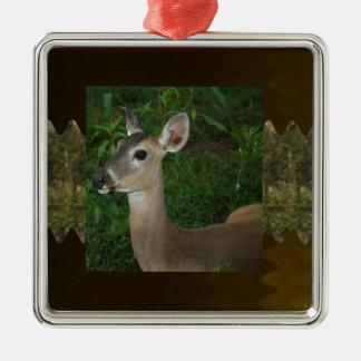 Deer Animal Mammal Zoo Farmer Jungle Wild Park fun Ornaments