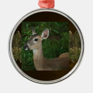 Deer Animal Mammal Zoo Farmer Jungle Wild Park fun Christmas Ornaments