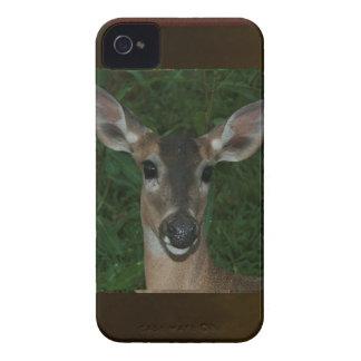 DEER Animal Wild Garden Park Zoo  Farmer Mammal iPhone 4 Case-Mate Case