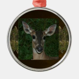 DEER Animal Wild Garden Park Zoo  Farmer Mammal Christmas Ornaments
