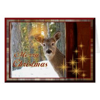 Deer at my window card