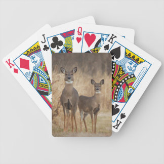 Deer at the cross road in an autumn setting bicycle playing cards