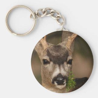 deer basic round button key ring