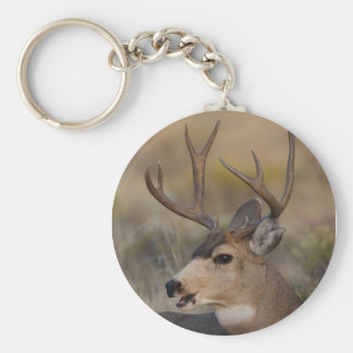 deer basic round button key ring