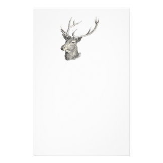 Deer Buck Head with Antlers Drawing Stationery