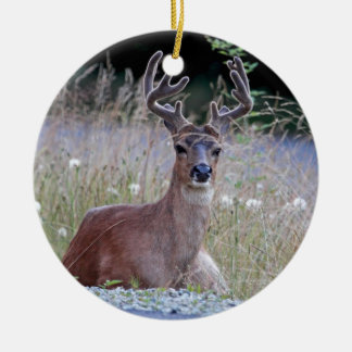 Deer Buck Lying Down Christmas Ornament