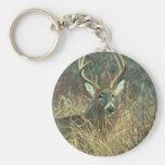 Deer / Buck / White-tailed Deer Keychains