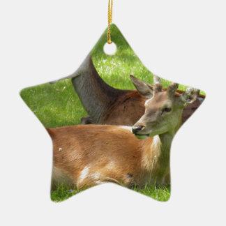Deer Ceramic Star Decoration