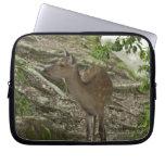 Deer Computer Sleeves