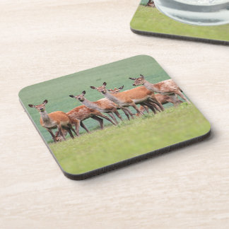 Deer Cork Coaster