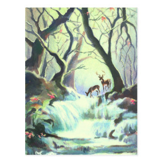 DEER CREEK by SHARON SHARPE Postcard