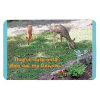Deer Cute Till Eat Flowers Horizontal 4x6 Magnet