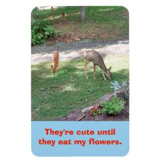 Deer Cute Until Eat My Flowers Vertical 4x6 Magnet
