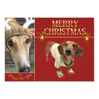 Deer dog - cute dog - whippet - Dachshund Card
