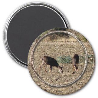 Deer Duo 7.5 Cm Round Magnet