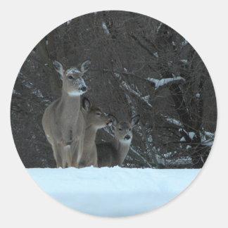 Deer Family Round Sticker